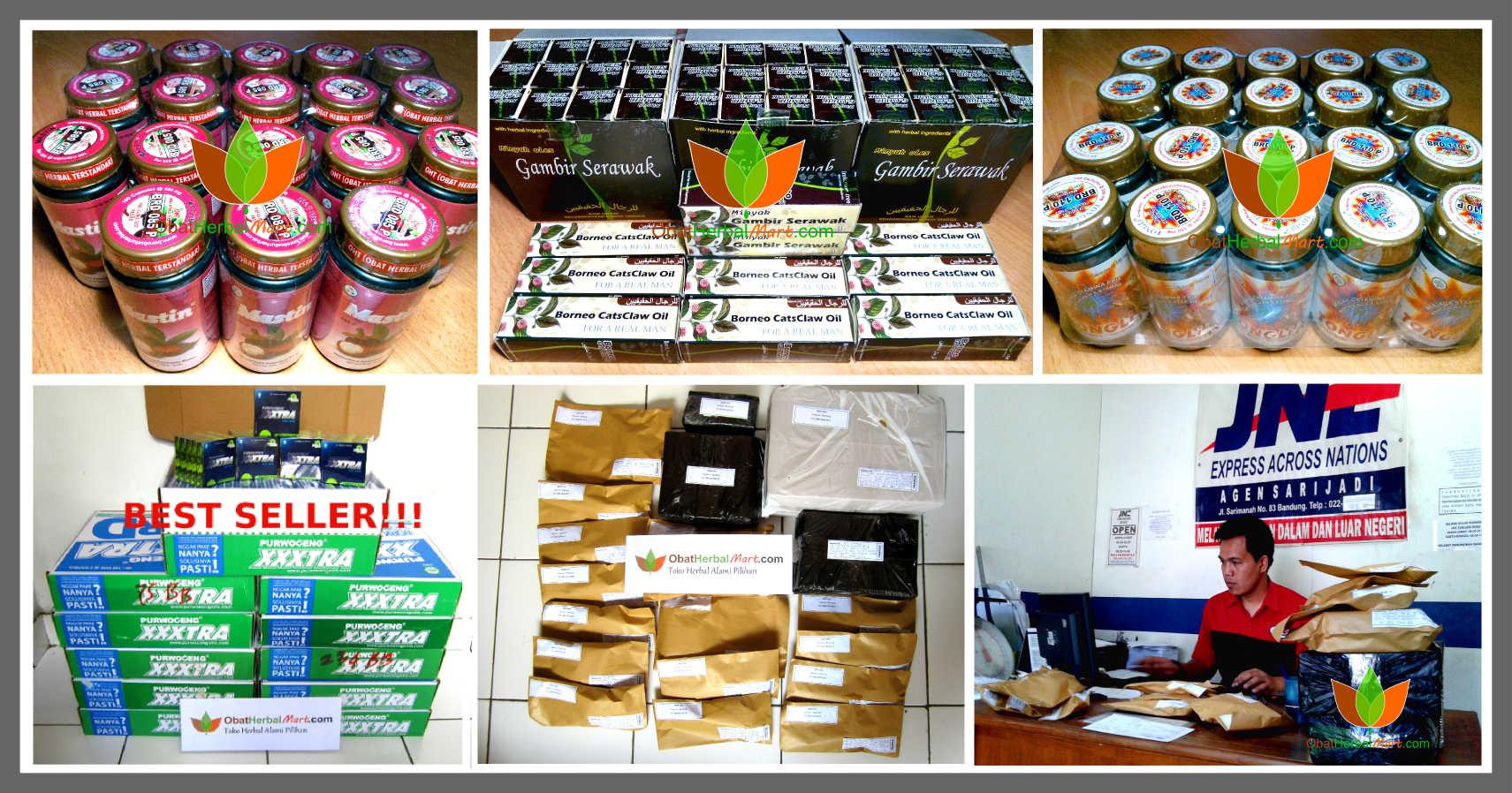 Foto-Foto Toko Obat Herbal Mart.com