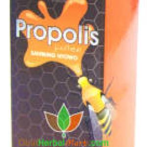 Propolis Pollen Sambung Nyowo 10ml