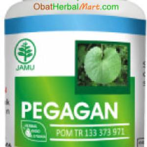 Pegagan Herbal Indo Utama 60 Kapsul