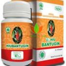 HIU Bantugin Herbal Indo Utama 60 Kapsul