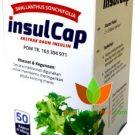 InsulCap Kapsul Daun Insulin (Yakon) Hanifah Muslimart 50 Kapsul