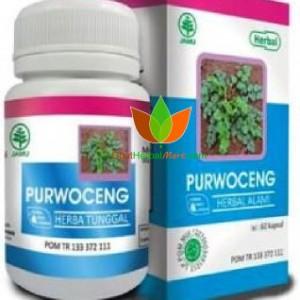 Purwoceng Herbal Indo Utama 60 Kapsul