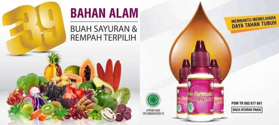 Soman Sozo Formula Manggata 1 Soman Indonesia 15 Ml brosur