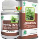 Sambung Nyowo Herbal Indo Utama 60 Kapsul