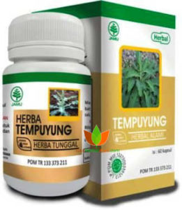 Herba Tempuyung Herbal Indo Utama 60 Kapsul - Toko Herbal Mart Bandung
