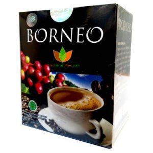 Kopi Borneo Anugrah Ori Bionature Indonesia 5 Sachet