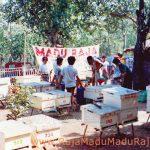 Raja Madu Madu Raja, Madu Mentah (Raw Honey) 1 Kg